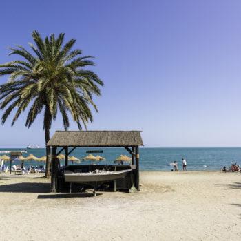 Playa La Malagueta-MEDIA